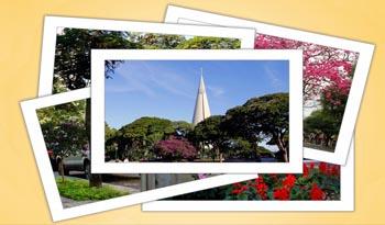 Concurso fotográfico que registra as belezas de Maringá está com inscrições abertas