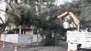Normalização de energia elétrica pode demorar até sete dias em algumas regiões do Paraná