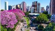 Novo decreto flexibiliza atendimento em diversos setores do comércio em Maringá