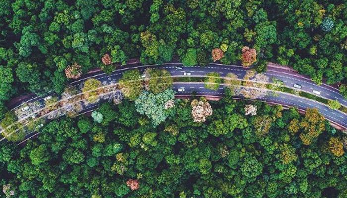 Confira as fotografias aéreas de Maringá que têm feito sucesso no Instagram