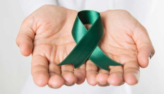 'Setembro Verde' marca mês com campanhas em prol da doação de órgãos no Brasil