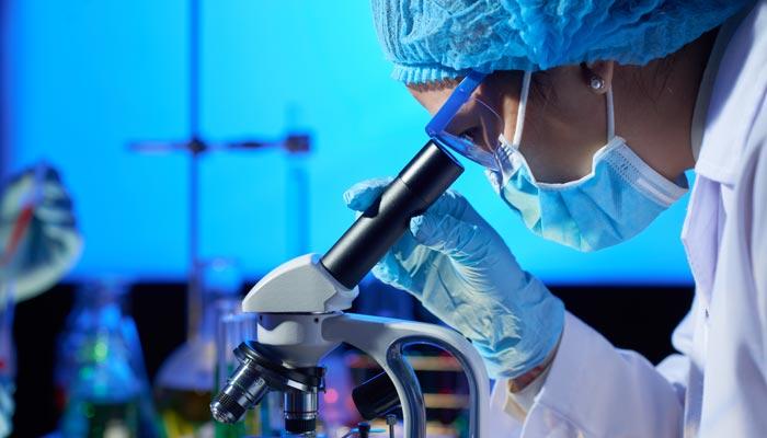 Pesquisas no combate ao câncer ganham destaque