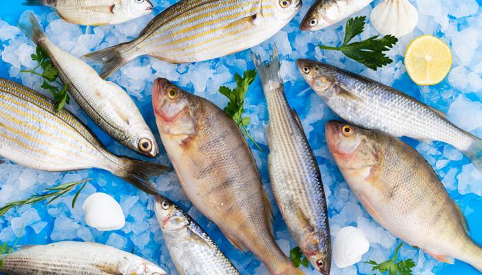 Peixes em Maringá chegam a ter variação de preço de até 160%