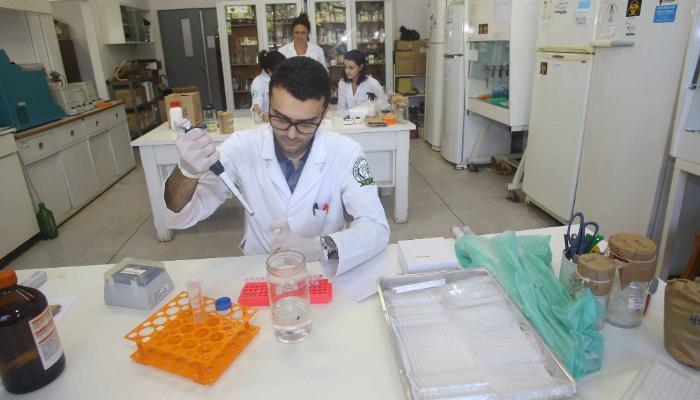 Universidades estaduais do Paraná conquistam nota máxima no Enade