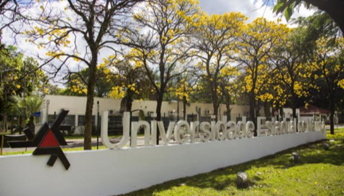 Universidade Estadual de Maringá pode retomar as aulas em agosto