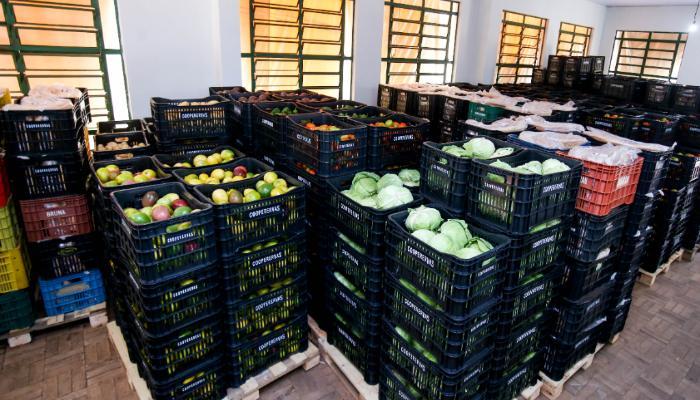Prefeitura inicia distribuição de alimentos adquiridos da agricultura familiar