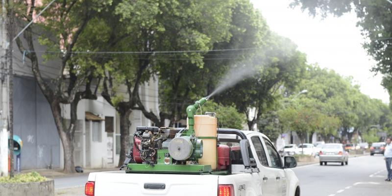 Paraná lidera redução de casos de dengue